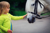 little girl touching big horse in nature