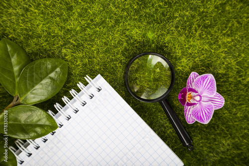 Foto op Plexiglas Gras Notebook, magnifier,orchid and green leaves