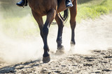 The hooves of walking horse with rider in sand dust. Shallow DOF. - 178337774