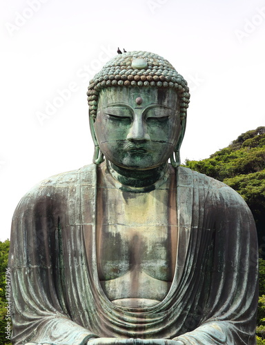 Foto op Canvas Boeddha Main view of the Daibutsu, the famous great buddha bronze statue placed in Kotokuin Temple in Kamakura, Japan.