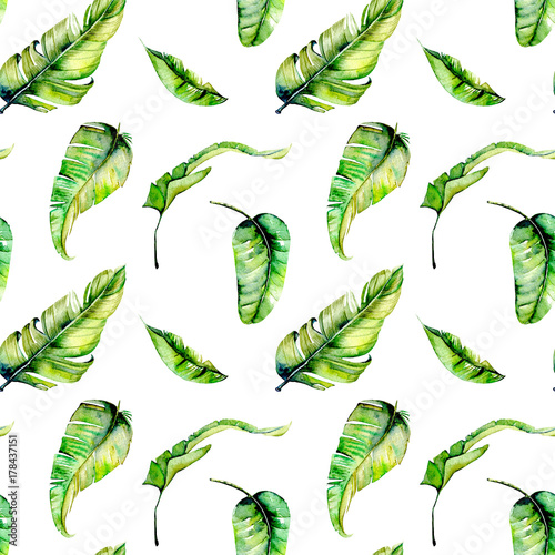 Watercolor palm tropical green leaves seamless pattern, hand painted isolated on a white background © nastyasklyarova