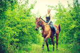 Young woman sitting on a horse - 178486303