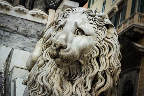 tristezza del leone Poster