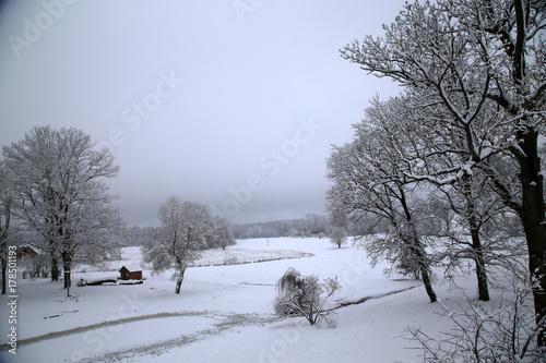 Fotobehang Grijs Winterlandschaft in Lettland