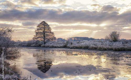 Foto op Plexiglas Beige Winterlandschaft