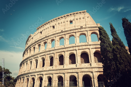 Colosseum with cypress trees in vintage tone Poster
