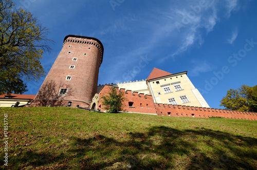 Foto op Plexiglas Krakau The castle in Krakow, Poland (Wawel)