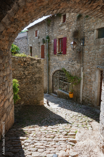 Historic buildings in the old village of Labeaume in the Ardeche region of France