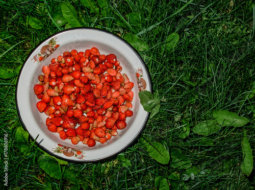 Little strawberries in a white bowl Plakat