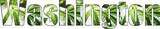 Washington Marijuana Logo High Quality