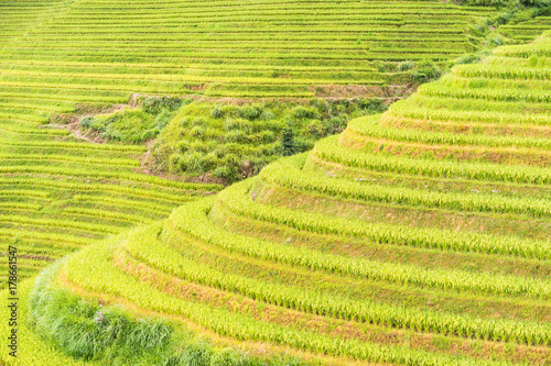 Plexiglas Guilin The Longsheng Rice Terraces(Dragon's Backbone) also known as Longji Rice. Longsheng