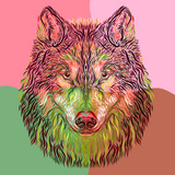 creative and colorful image of a wolf