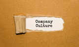 The text Company Culture appearing behind torn brown paper - 178688743