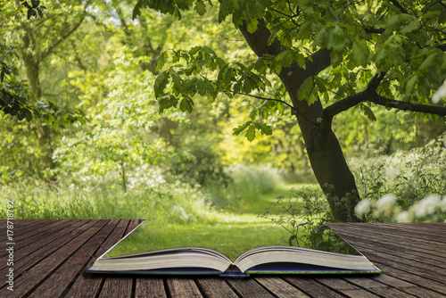 Papiers peints Pistache Lovely shallow depth of field fresh landscape of English forest and countryside in Spring sunshine concept coming out of pages in open book