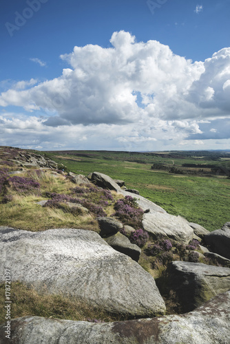 Papiers peints Vieux rose Beautiful vibrant landscape image of Burbage Edge and Rocks in Summer in Peak District England