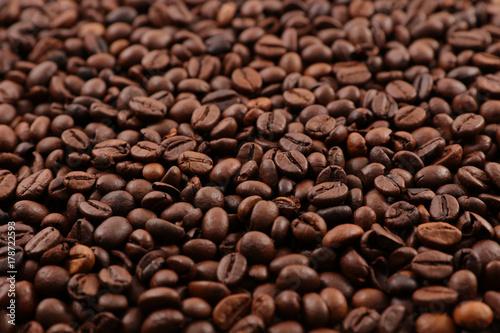 close up on coffee bean