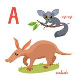 Set of wild animals in cartoon style, vector illustration of aardvark and aye-aye