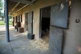 Large horse stable - 178725129