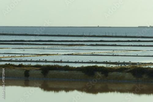 Fotobehang Pier Saline di Marsala con i suoi mulini e vasche al tramonto