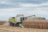 moissonneuse batteuse et champ de maïs - 178730726