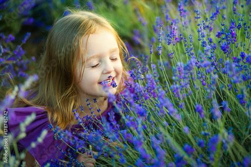 Portrait of cute little girl is resting in a lavender field - 178745742