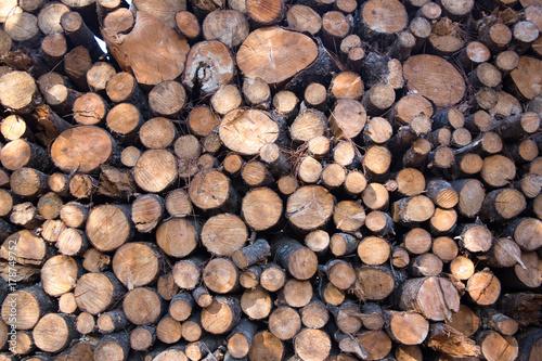 Papiers peints Texture de bois de chauffage Stack of Cut Firewood