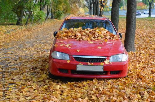 Foto op Plexiglas Kiev Car in fallen leaves in autumn time.