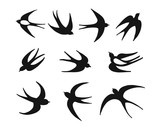 Swallows, sketch for your design - 178762727