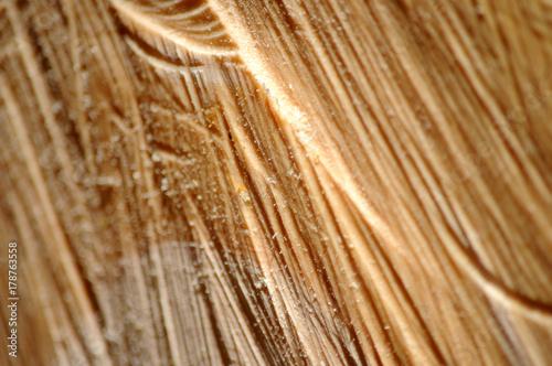 Deurstickers Brandhout textuur 178763558