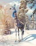 giraffe in the winter forest - 178773351