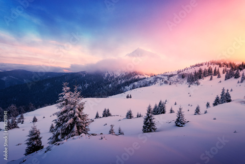Fotobehang Winter Fantastic pink evening landscape