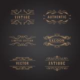 set retro ornaments label luxury vintage logo vector - 178792797