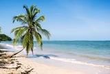 beach - 178803173
