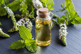 A bottle of peppermint essential oil with blooming peppermint twigs - 178808130