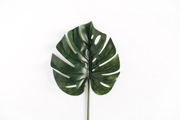 Monstera leaf isolated on white background. Minimal flat lay, top view concept.
