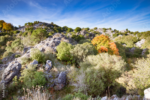 Foto op Plexiglas Beige After sunrise - the scenic view down from the highest mount (Pantocrator) on the Ionian Island Corfu, Greece. White rocks, beautiful autumn colors, maquis shrubland, blue sky.