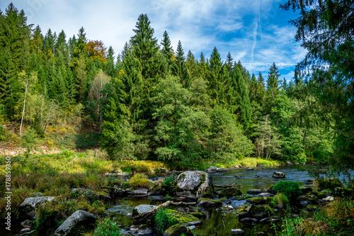 Bäume mit Gras und Fluss im Herbst im Bayerischen Wald - 178859350