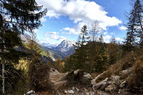 Foto op Plexiglas Chocoladebruin montagna percorso 215