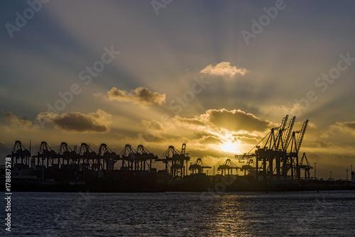 Sonnenuntergang in Hamburger Hafen Poster