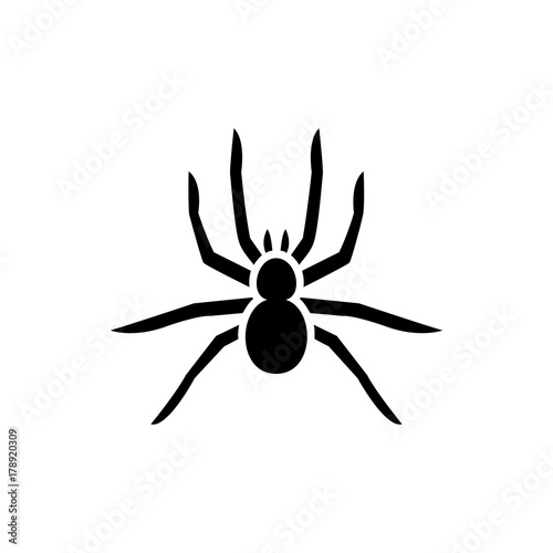 Fototapeta spider icon illustration