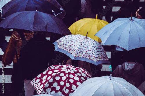 Juliste 傘を差す人々 横断歩道