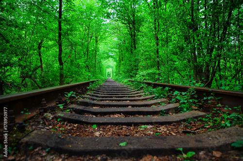 Foto op Plexiglas Groene a railway in the spring forest tunnel of love