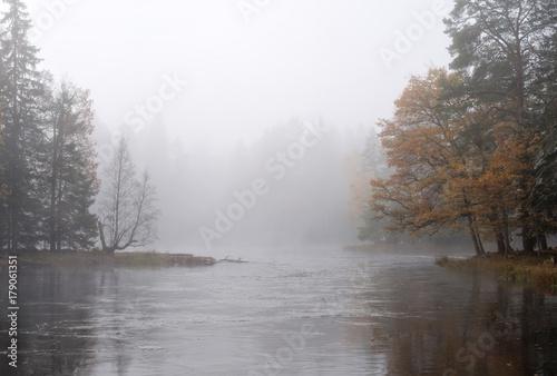 Misty autumn morning by the riverside. Farnebofjarden national park in Sweden. - 179061351