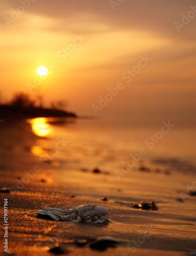 Sunset in Japan sea, Vladivostok Poster
