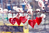 Valentine day love beautiful. Heart hanging on flowering branch of tree on city background. - 179115533