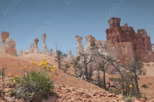 Fotobehang Zalm Brice Canyon_Utah_USA