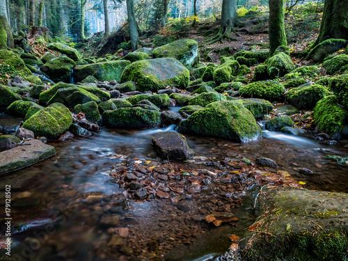 Papiers peints Rivière de la forêt Monbachtal im Herbst