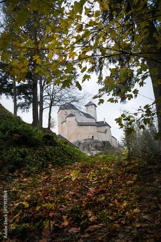 Fotobehang Zwart Burg Rappottenstein im Waldviertel