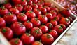 Fresh organic tomatoes product pattern - 179205135
