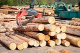 Forstwirtschaft - Holzlager, Greifzange zur Holzverladung